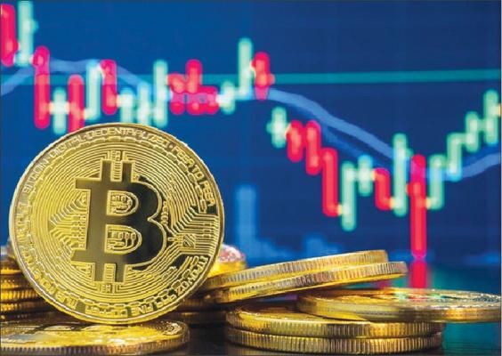 đầu tư crypto: hold và trade
